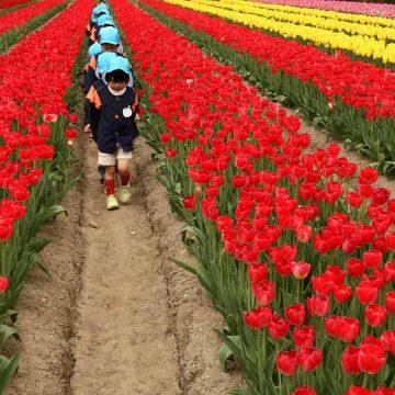 Japanse moeders eisen kinderopvang