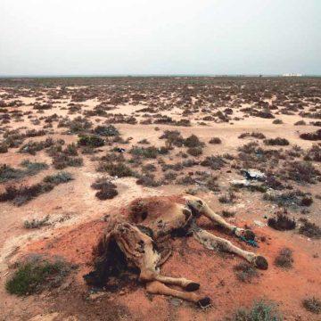 In Tunesië dreigt een opstand der dorstigen