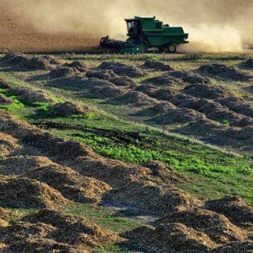 Soja verwoest Argentijnse bodem