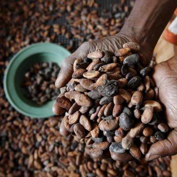 Afrikaan moet aan reep, truffel en bonbon