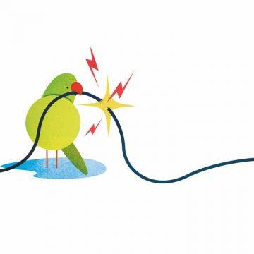 3. Cyberoorlog is eng. Maar in paniek raken zou dom zijn