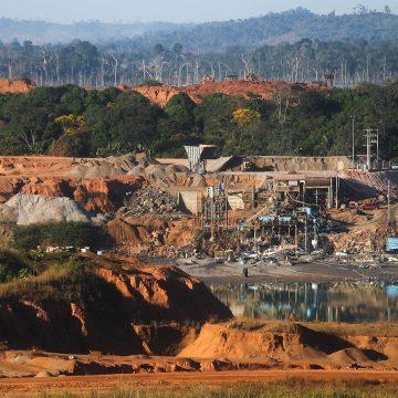 Is het Amazonewoud bestand tegen de Trump van de Tropen?