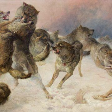De wolven van Stanislav