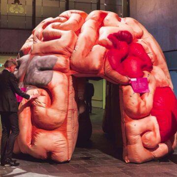 Het eenzame brein