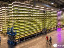 Kan de aarde 10.000.000.000 mensen voeden?