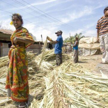 'Dit zijn dorpen met vrouwen zonder baarmoeder'