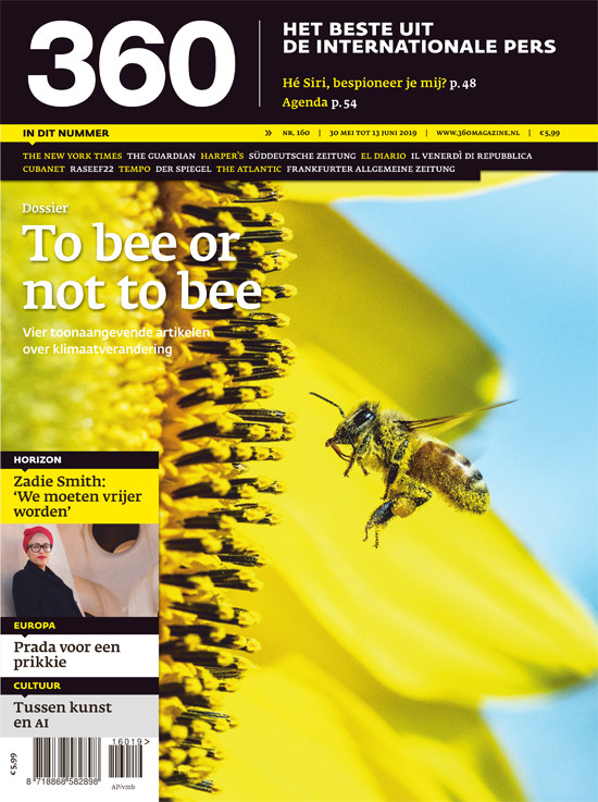 Editie 160 | To bee or not to bee