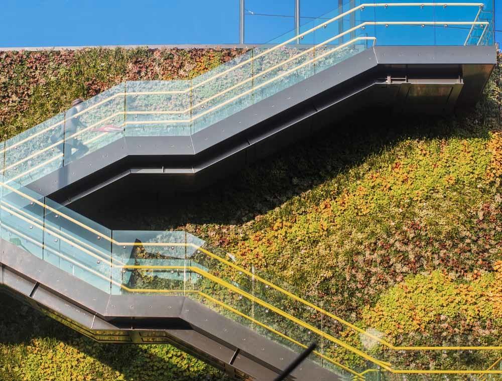 Planten in de stadLinks: trappen naar een tramstation in Manchester. – © Getty Images Rechts: verticale tuin in Madrid. – © Getty Images/Vetta