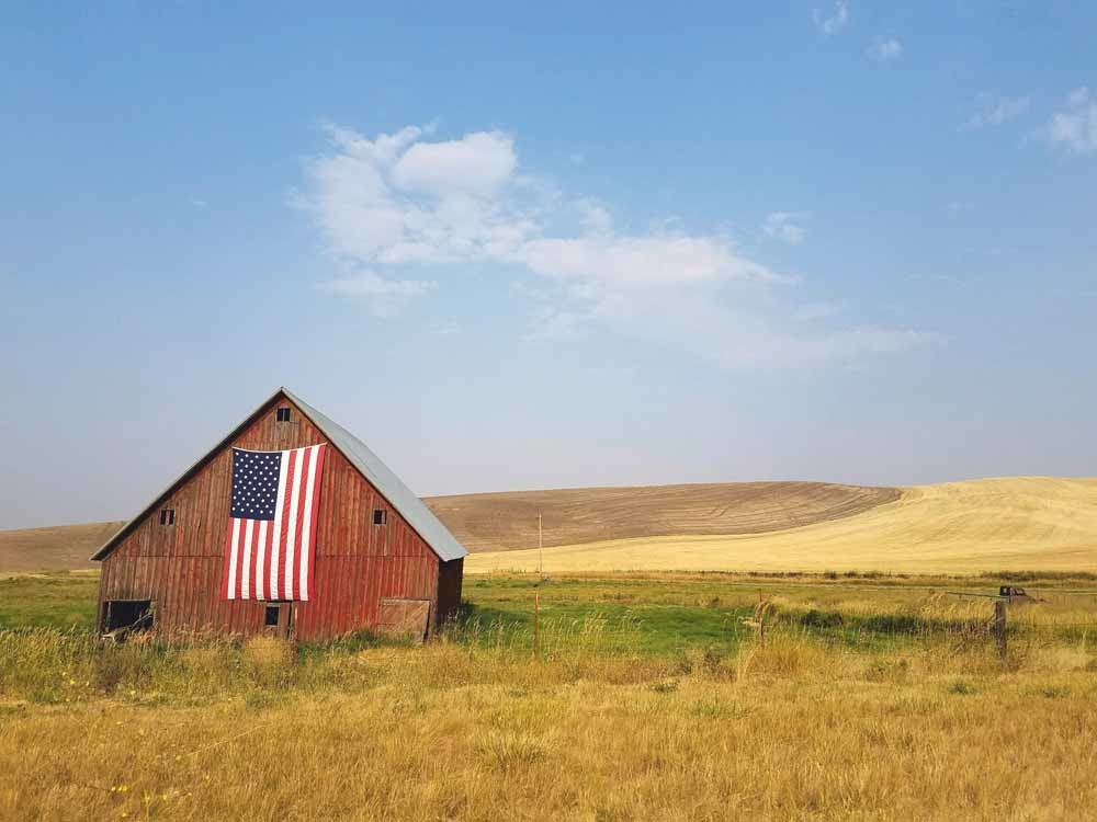 Kateb: 'Je houdt niet van je land, maar voelt je verbonden met de grondwet ervan als die goed is voor jou en je medeburgers.' – © Specphotops / Unsplash
